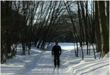 winter cross-country skiing