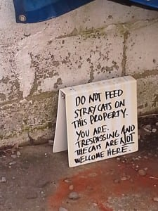 A sign in the parking lot behind 117 Main St. in Cold Spring warns people not to feed stray cats on the property.