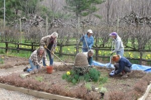 Philipstown Garden Club members working in the Boscobel herb garden on a Tuesday morning.  Photo courtesy Phiipstown Garden Club
