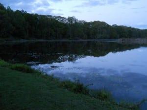 LakeOssi(Photo courtesyofPutnamCountySPCA)