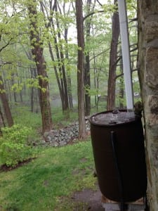 A rain barrel in action  Photo by P. Doan