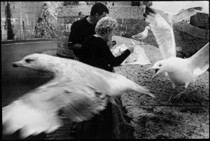 Picnic with Seagulls by Leonard Freed