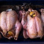 roast chicken[2]