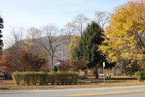 McConville Park