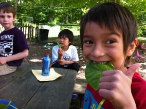 Veggie consumption with a smile courtesy of Hudson Valley Seed (Photo by Ava Bynum)