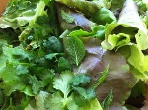 herb salad 1