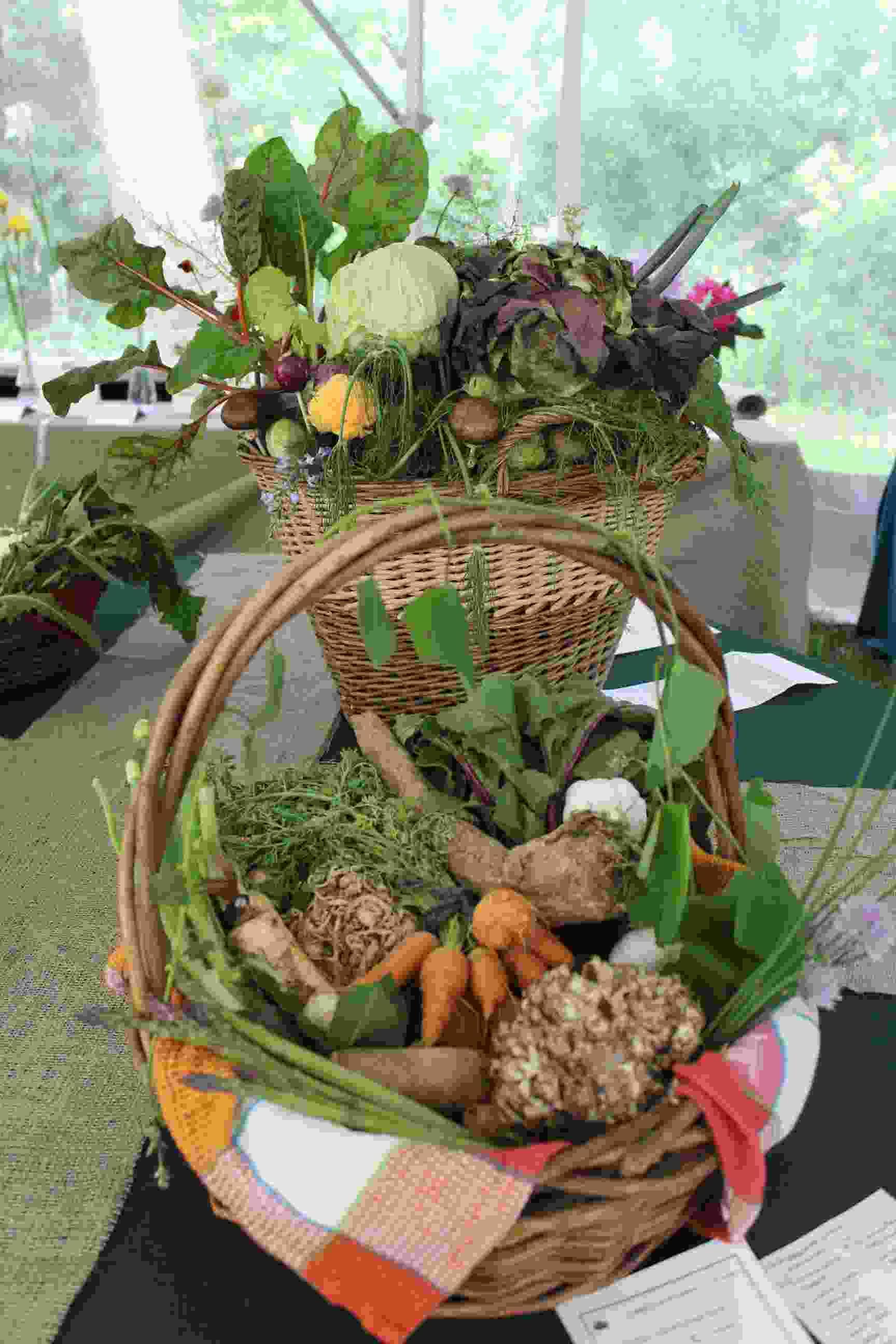 Philipstown Garden Club Flower Show IMG_0007