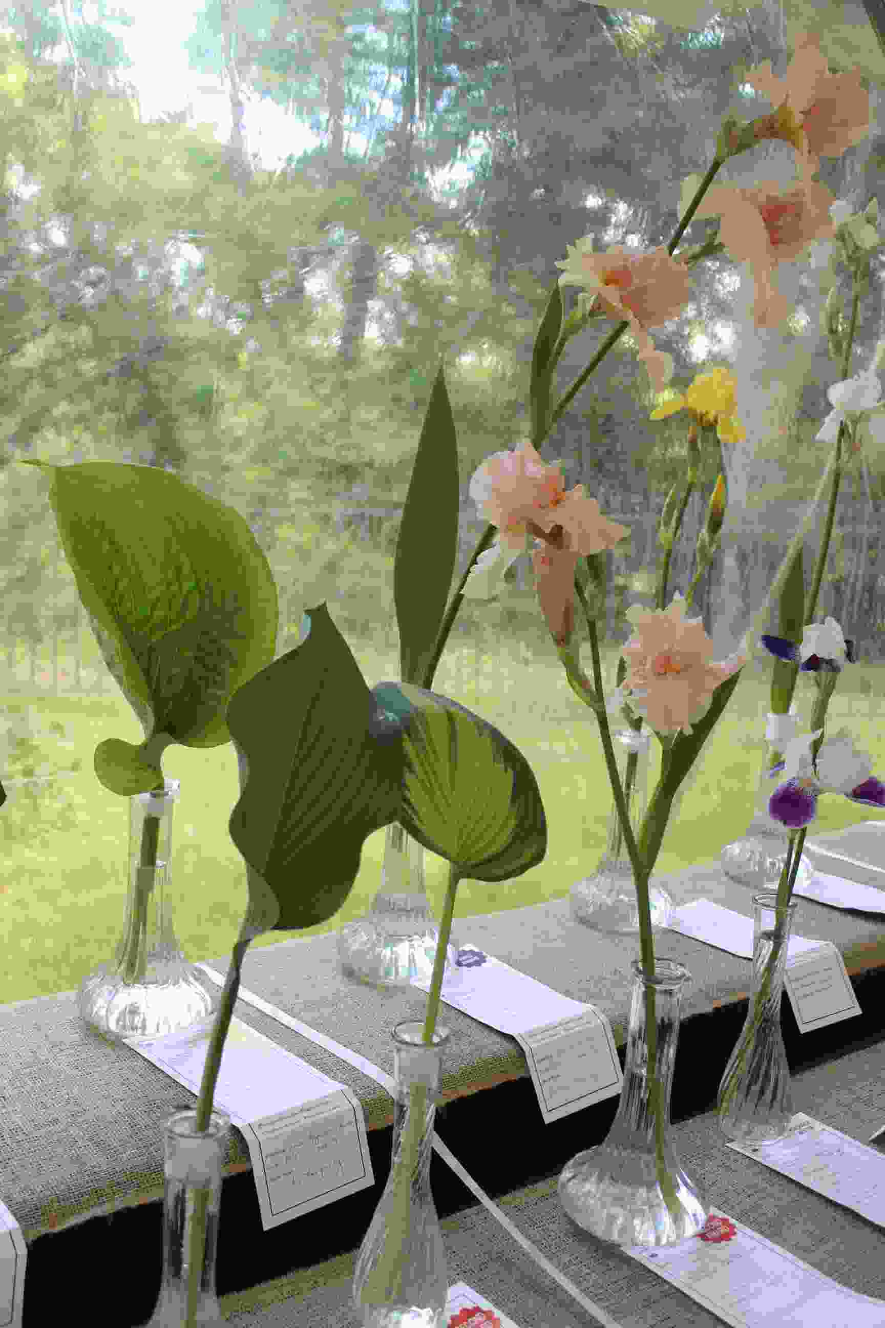 Philipstown Garden Club Flower Show IMG_0011