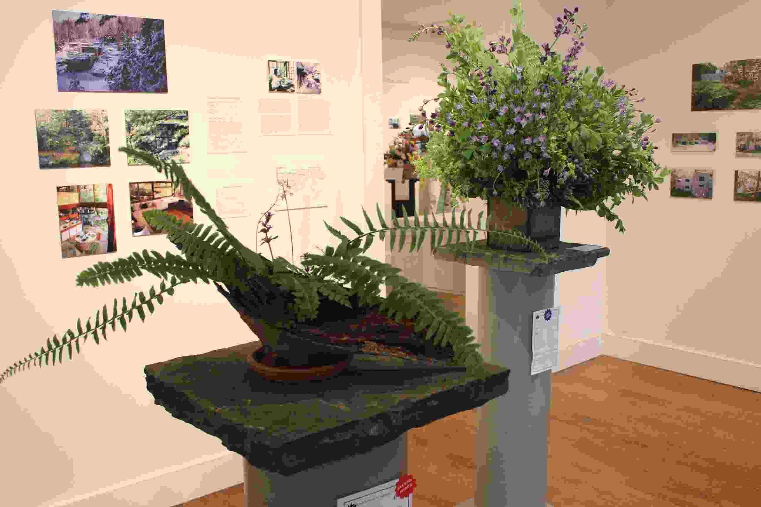 Philipstown Garden Club Flower Show IMG_9990