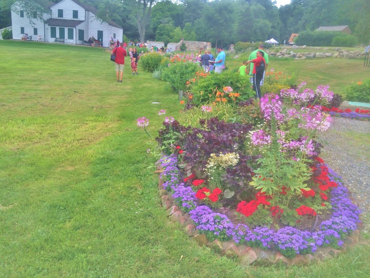Garden Day-1
