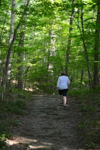 Trails lead visitors through the wooded landscape.