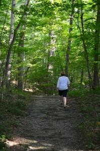 Trailsleadvisitorsthroughthewoodedlandscape.
