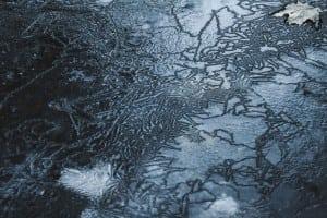 """Ice,1""photographbyMatthewReinhold"