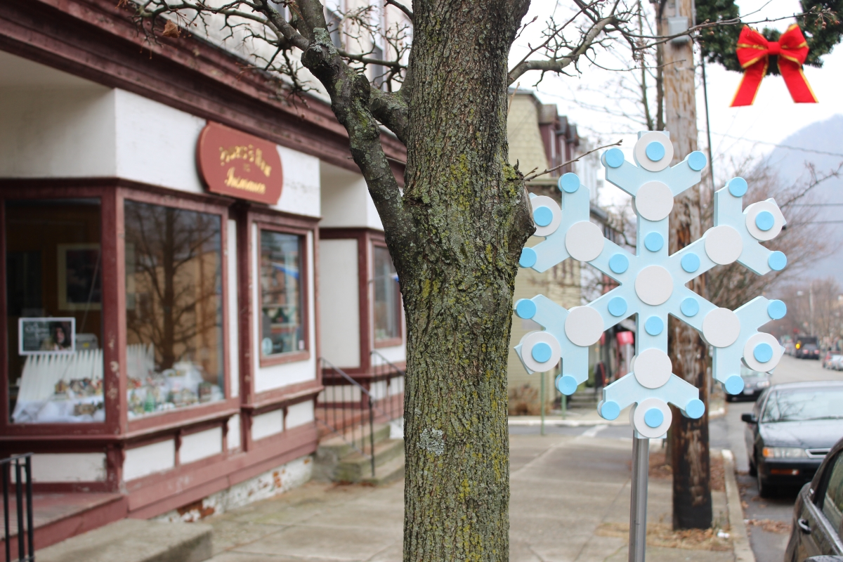 Snowflakes IMG_1017