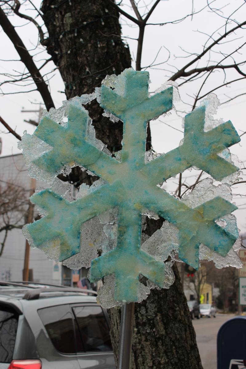 Snowflakes IMG_1023