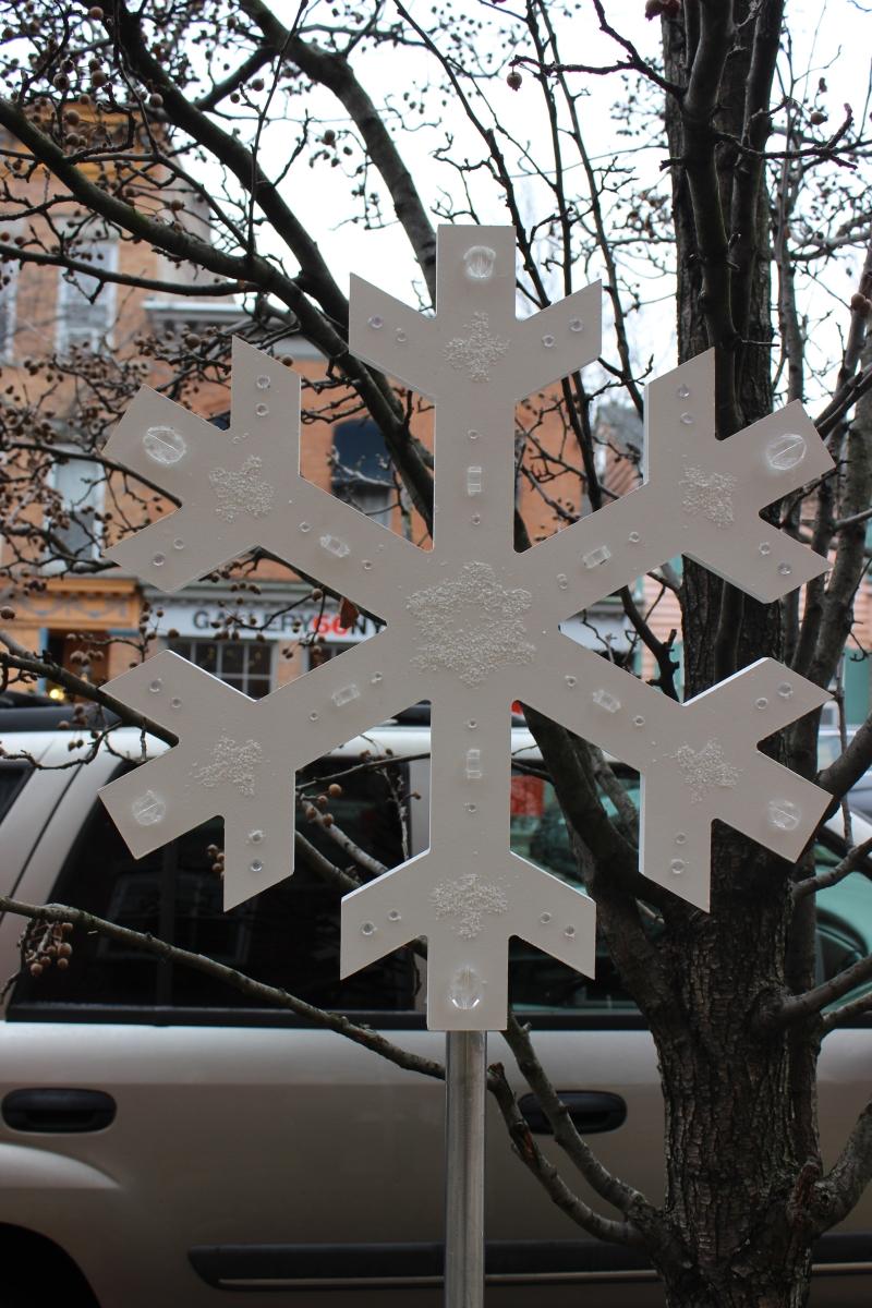 Snowflakes IMG_1030