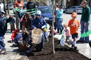 Young arborists smooth the ground under the first tree.