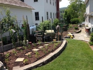 Tidy vegetable beds are terraced into the slope on the side of the house.