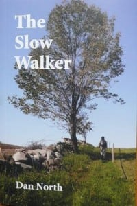 The cover of The Slow Walker