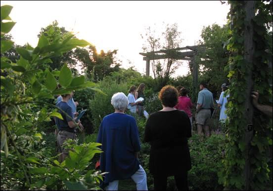 Stonecrop Garden walk