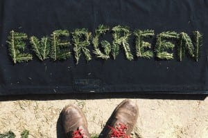 "The ""Evergreen"" logo"