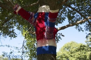 Tree-sonist Behavior by Karen Madden