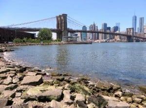 The Brooklyn Bridge, by Kevin Woyce