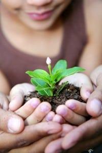 Givingthanksforaplentifulharvest(Filephoto)