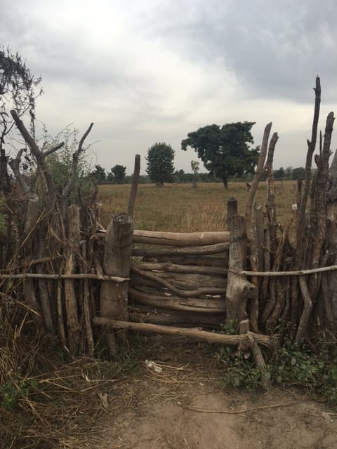 A handmade fence in Senegal (photo by William Benjamin)