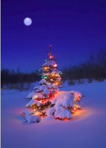 December's full moon will fall on Christmas Day for the first time since 1977. According to NASA, the next Christmas Day full moon will occur in 2034.
