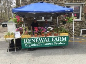 Flowers and vegetables are sold seasonally by residents and staff from Renewal Farm.