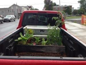 Acreativesolutionforatime-strappedgardener?Gardenanywhere,anytime.(PhotobyP.Doan)