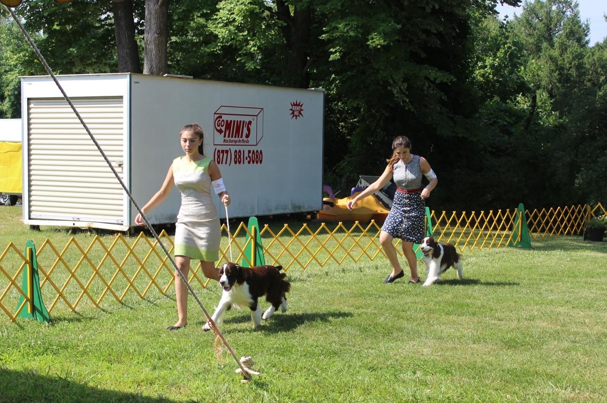 Dog Show IMG_4863