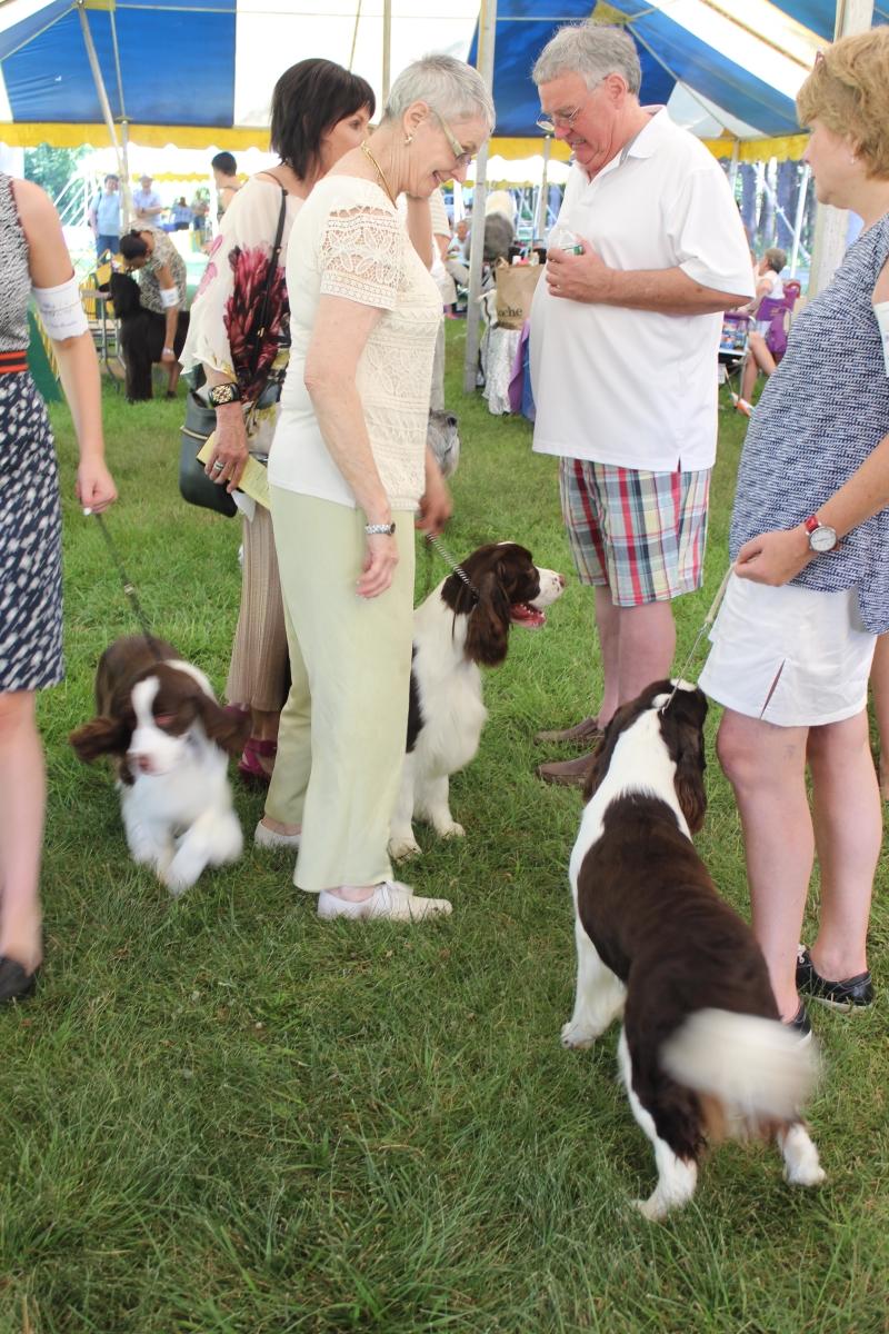 Dog Show IMG_4869