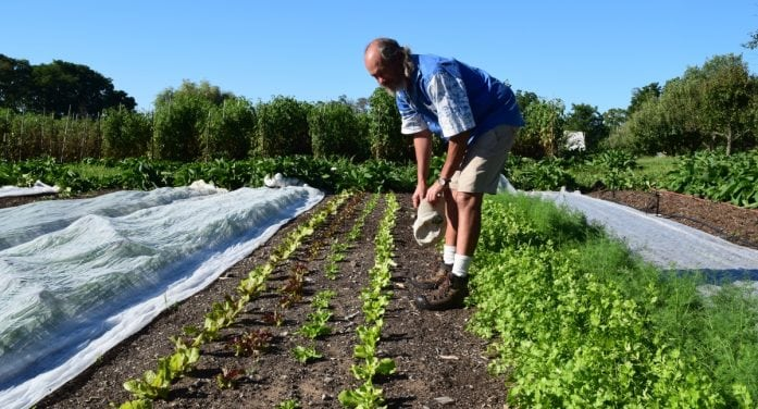 Four Winds: A Thriving Organic Farm