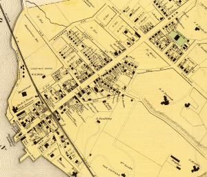 Detail from an 1868 map of Cold Spring (Rumsey Collection)