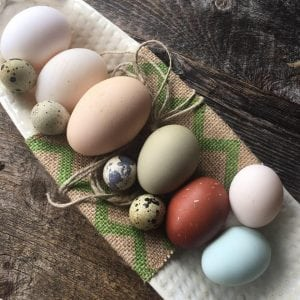 Chicken, quail and duck eggs from Cat Rock (photo provided)