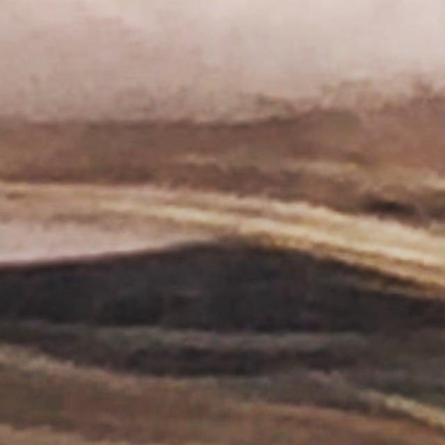 Max Mueller pre-settlement riverview (blonde wearing pink jacket zoom)