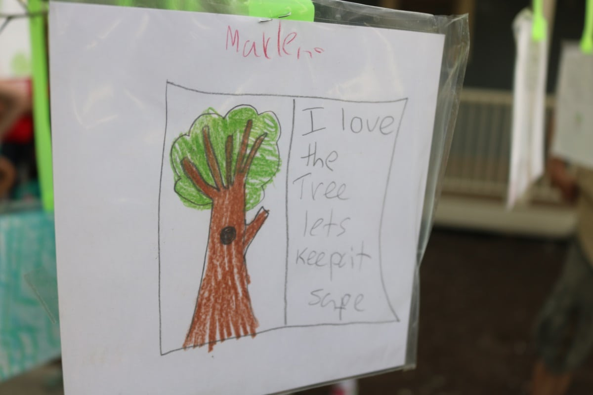 Arbor Day Poem