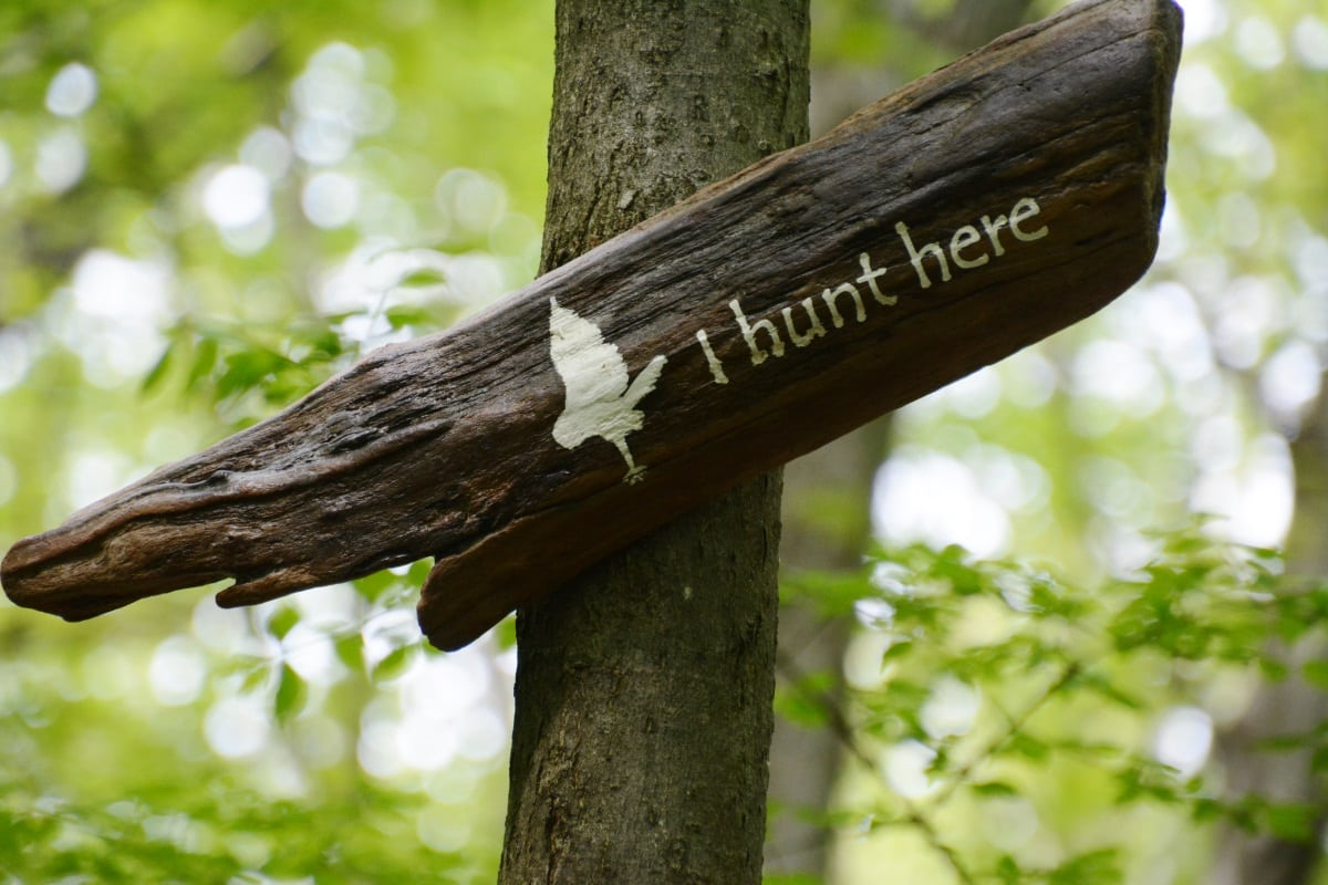 Nelsonville woods signs-12