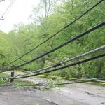 Route 403 in Garrison was closed on Wednesday due to fallen trees that toppled power lines. (Photo by Michael Turton)