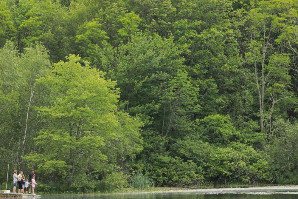 7T1A2957 fishing