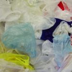 Dutchess Adopts Plastic Bag Ban