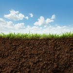 Could Soil Save Us?