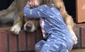Baby & Dog