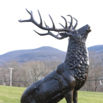 A Visit with the Beacon Elks