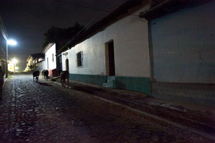 21_Las Vacas(1)