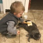 Kid Friendly: When a Pet Dies