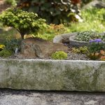 Roots and Shoots: Timberline Vista, Homemade Trough