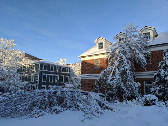 tortola snow
